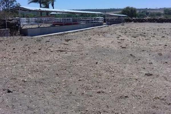 Foto de casa en venta en  , cerca blanca, yahualica de gonzález gallo, jalisco, 7953788 No. 65