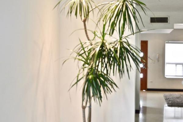 Foto de casa en venta en  , cerrada de cumbres, chihuahua, chihuahua, 11444227 No. 07