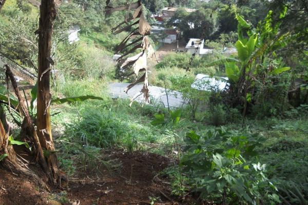 Foto de terreno comercial en venta en  , cerro colorado, xalapa, veracruz de ignacio de la llave, 3135666 No. 01