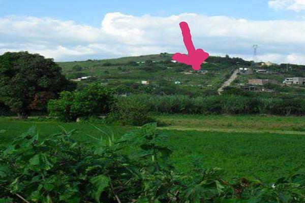 Foto de terreno habitacional en venta en cerro de los filtros , san antonio de la cal centro, san antonio de la cal, oaxaca, 7507272 No. 03