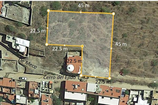 Foto de terreno habitacional en venta en cerro del ejido 10 , alameda, guanajuato, guanajuato, 19354486 No. 01