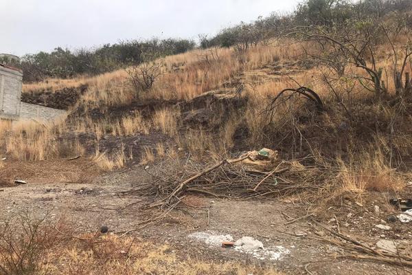 Foto de terreno habitacional en venta en cerro del ejido 10 , alameda, guanajuato, guanajuato, 19354486 No. 03