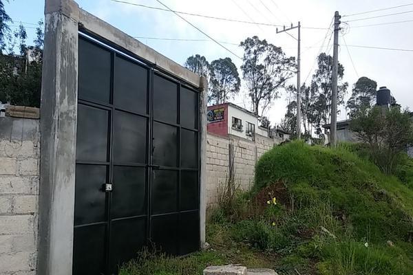 Foto de terreno habitacional en venta en  , cerro del murciélago, zinacantepec, méxico, 14030455 No. 03