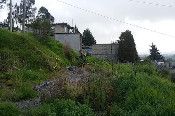 Foto de terreno habitacional en venta en  , cerro del murciélago, zinacantepec, méxico, 14030455 No. 04