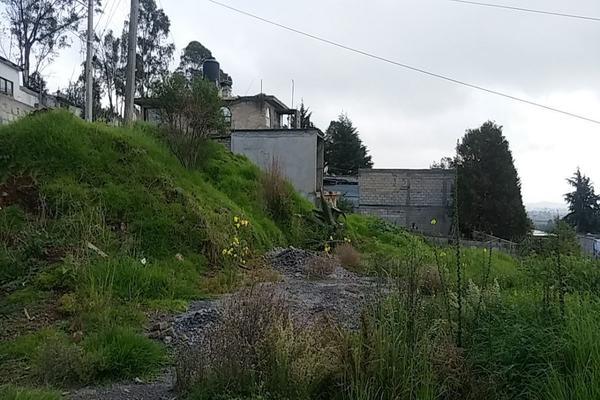 Foto de terreno habitacional en venta en  , cerro del murciélago, zinacantepec, méxico, 14030455 No. 05