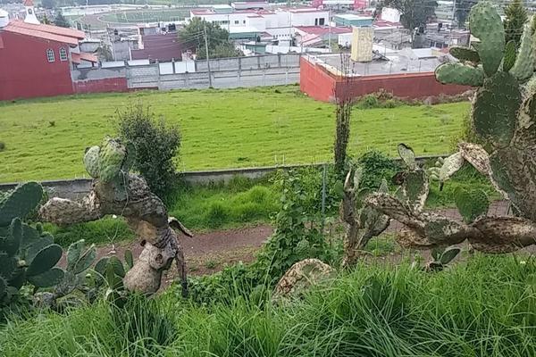 Foto de terreno habitacional en venta en  , cerro del murciélago, zinacantepec, méxico, 14030455 No. 06