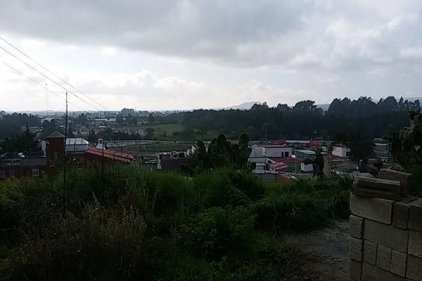 Foto de terreno habitacional en venta en  , cerro del murciélago, zinacantepec, méxico, 14030455 No. 10