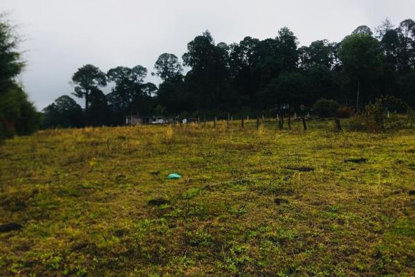Foto de terreno habitacional en venta en cerro gordo 0, cerro gordo, valle de bravo, méxico, 5412771 No. 01