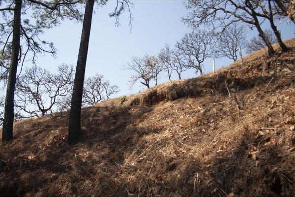 Foto de terreno habitacional en venta en  , san gaspar, valle de bravo, méxico, 5384759 No. 01