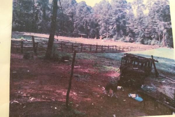 Foto de terreno comercial en venta en  , cerro gordo, valle de bravo, méxico, 8093846 No. 02