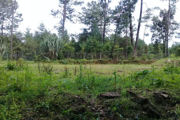Foto de terreno habitacional en venta en cerro gordo , valle de bravo, valle de bravo, méxico, 9258847 No. 02