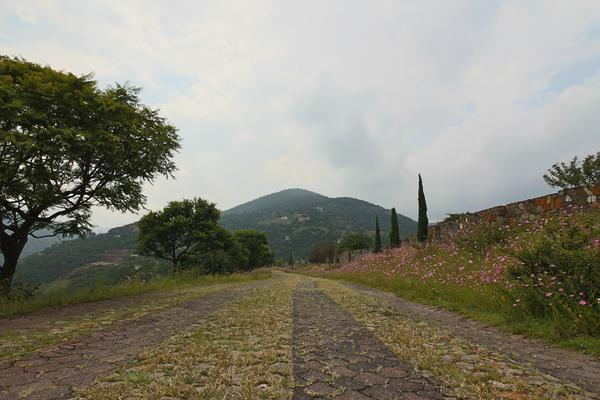 Foto de terreno habitacional en venta en  , cerro verde, morelia, michoacán de ocampo, 5893784 No. 01