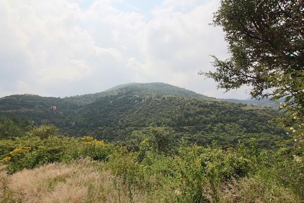 Foto de terreno habitacional en venta en  , cerro verde, morelia, michoacán de ocampo, 5893784 No. 07