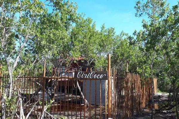 Foto de casa en venta en chalupa 7, isla de holbox, lázaro cárdenas, quintana roo, 0 No. 03