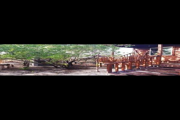 Foto de casa en venta en chalupa 7, isla de holbox, lázaro cárdenas, quintana roo, 0 No. 26