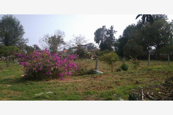 Foto de terreno habitacional en venta en  , chamilpa, cuernavaca, morelos, 5303857 No. 12