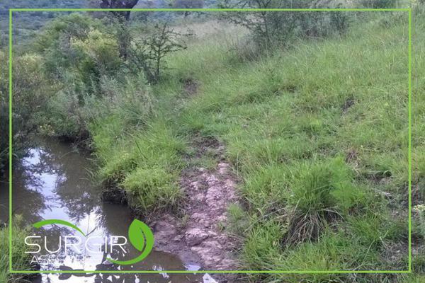 Foto de terreno habitacional en venta en  , charo, charo, michoacán de ocampo, 13309467 No. 02