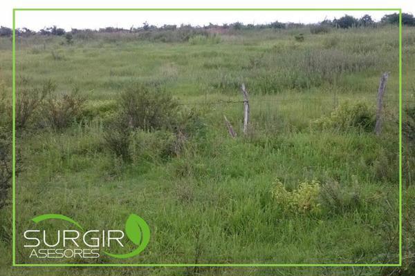 Foto de terreno habitacional en venta en  , charo, charo, michoacán de ocampo, 13309467 No. 05