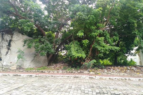 Foto de terreno habitacional en venta en chavitas 20 , pichilingue, acapulco de juárez, guerrero, 12821073 No. 01