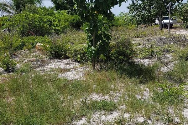 Foto de terreno habitacional en venta en  , chelem, progreso, yucatán, 8118696 No. 02