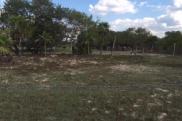 Foto de terreno industrial en venta en cherna 00, isla de holbox, lázaro cárdenas, quintana roo, 5674574 No. 03