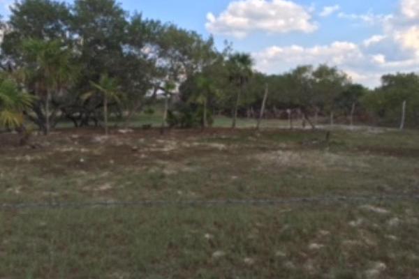 Foto de terreno industrial en venta en cherna 00, isla de holbox, lázaro cárdenas, quintana roo, 5674574 No. 04