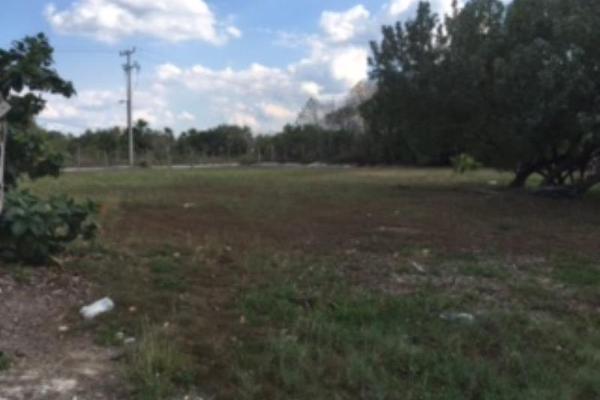 Foto de terreno industrial en venta en cherna 00, isla de holbox, lázaro cárdenas, quintana roo, 5674574 No. 08