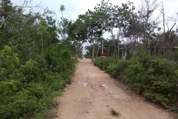 Foto de terreno comercial en venta en chetumal-cancun , tulum centro, tulum, quintana roo, 5357069 No. 01