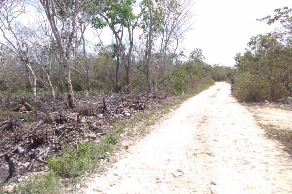 Foto de terreno comercial en venta en chetumal-cancun , tulum centro, tulum, quintana roo, 5357069 No. 02