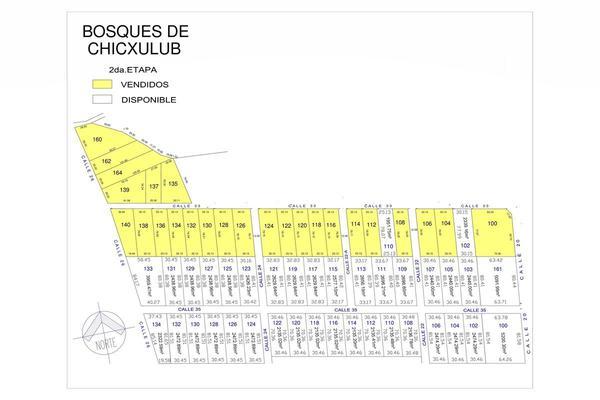 Foto de terreno habitacional en venta en  , chicxulub, chicxulub pueblo, yucatán, 3646207 No. 05