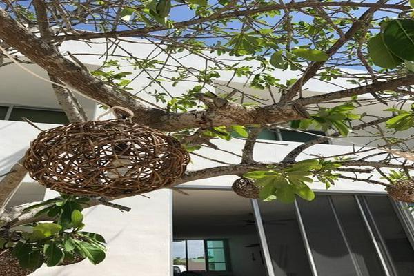 Foto de casa en venta en  , chicxulub puerto, progreso, yucatán, 15218536 No. 07