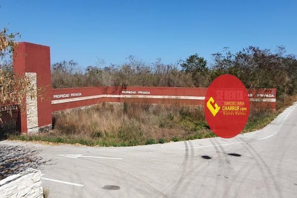 Foto de terreno comercial en venta en  , chicxulub puerto, progreso, yucatán, 17846646 No. 01