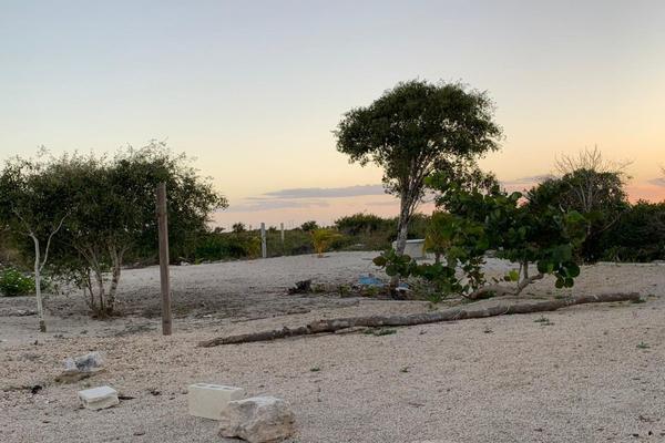 Foto de terreno habitacional en venta en  , chicxulub puerto, progreso, yucatán, 20175102 No. 04