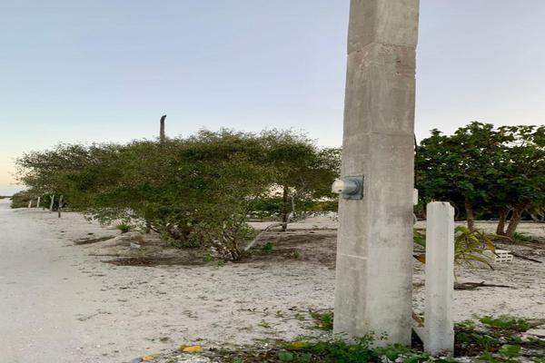 Foto de terreno habitacional en venta en  , chicxulub puerto, progreso, yucatán, 20175102 No. 07