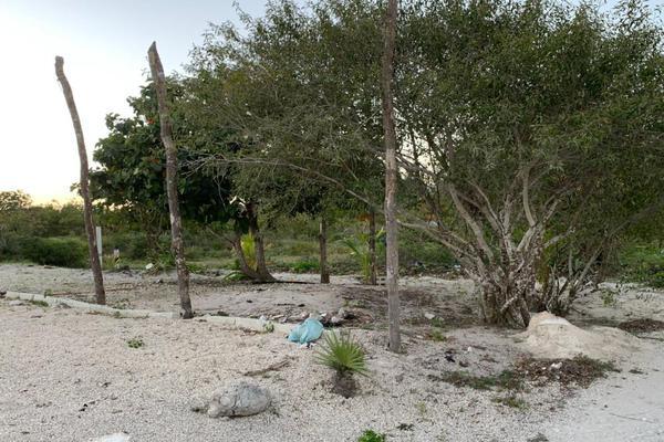Foto de terreno habitacional en venta en  , chicxulub puerto, progreso, yucatán, 20175102 No. 09