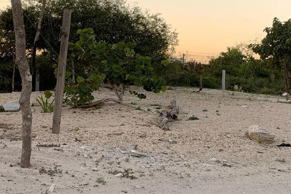 Foto de terreno habitacional en venta en  , chicxulub puerto, progreso, yucatán, 20175102 No. 10