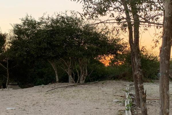 Foto de terreno habitacional en venta en  , chicxulub puerto, progreso, yucatán, 20175102 No. 11