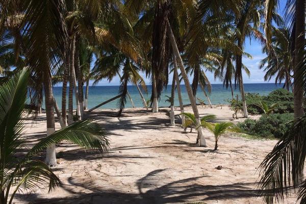 Foto de casa en renta en  , chicxulub puerto, progreso, yucat?n, 3125378 No. 08
