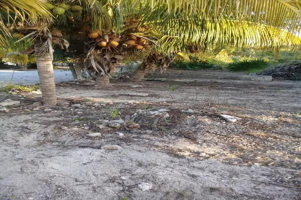 Foto de terreno habitacional en venta en  , chicxulub puerto, progreso, yucatán, 8040281 No. 01
