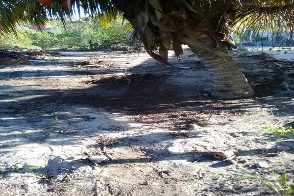 Foto de terreno habitacional en venta en  , chicxulub puerto, progreso, yucatán, 8040281 No. 02