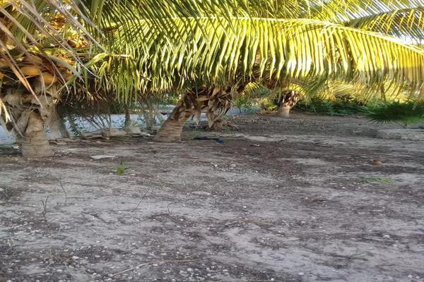Foto de terreno habitacional en venta en  , chicxulub puerto, progreso, yucatán, 8040281 No. 03