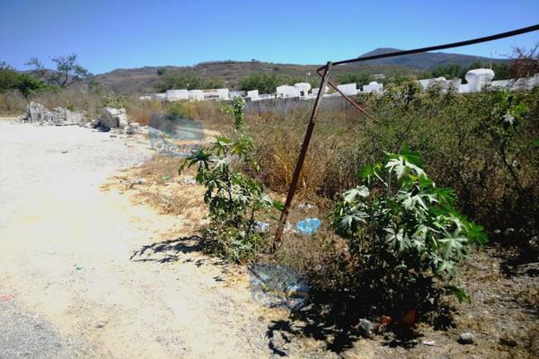 Foto de terreno habitacional en renta en  , chilpancingo de los bravos centro, chilpancingo de los bravo, guerrero, 14024272 No. 03