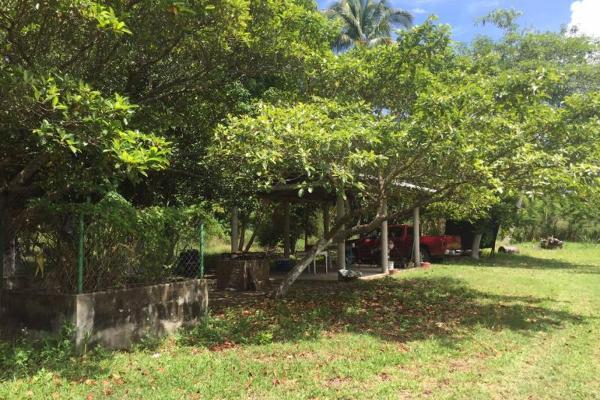 Foto de terreno habitacional en venta en  , chilpetec sección banco, paraíso, tabasco, 1441251 No. 02