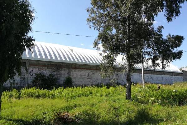 Foto de nave industrial en renta en chipilo 101, atlixco 90, atlixco, puebla, 10422545 No. 05