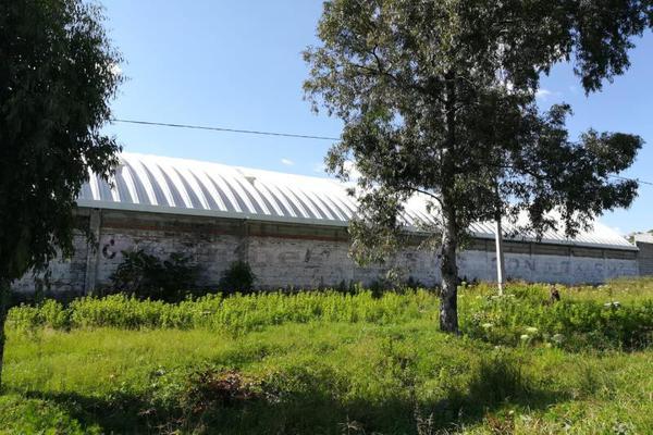 Foto de bodega en renta en chipilo 101, atlixco centro, atlixco, puebla, 10422545 No. 05