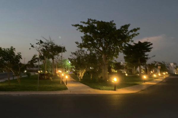 Foto de casa en venta en  , cholul, mérida, yucatán, 14026207 No. 08