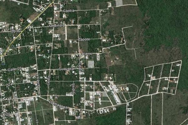 Foto de terreno habitacional en venta en  , cholul, mérida, yucatán, 3646170 No. 03