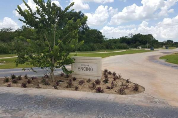 Foto de casa en venta en  , cholul, mérida, yucatán, 4638425 No. 10