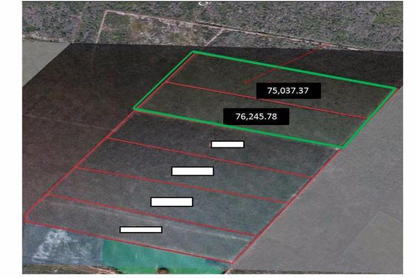 Foto de terreno habitacional en venta en  , cholul, mérida, yucatán, 8422560 No. 02