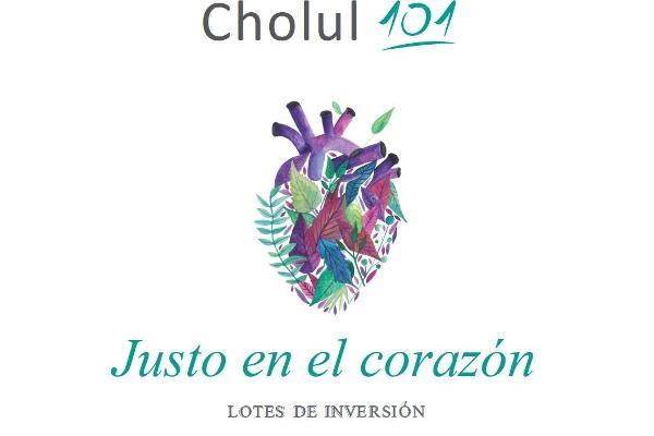 Foto de terreno habitacional en venta en  , cholul, mérida, yucatán, 9931692 No. 04